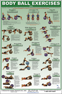Body Ball Exercises Core Fitness Destination